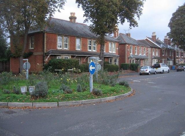 Houses along Netley Street