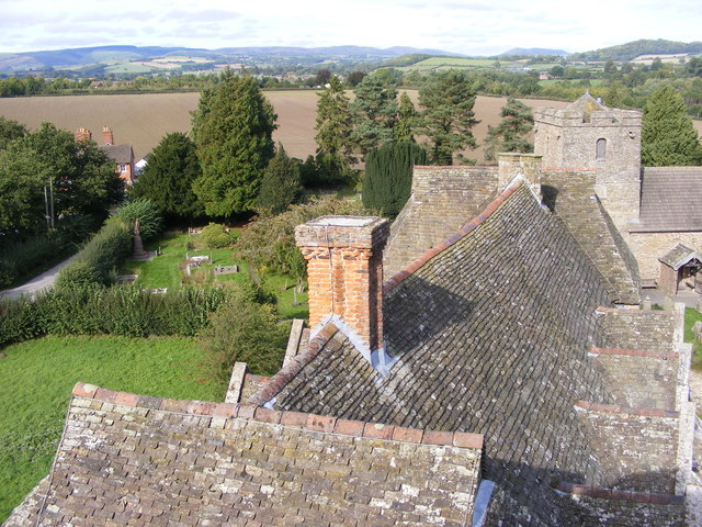 Stokesay Roofs