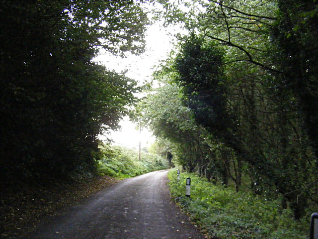 Pigeon's Lane, Washbrook