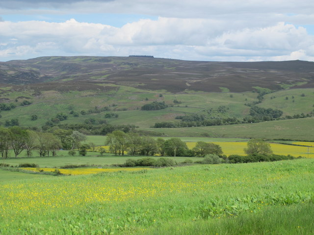 Farmland and woodland southwest of Dunns Farm