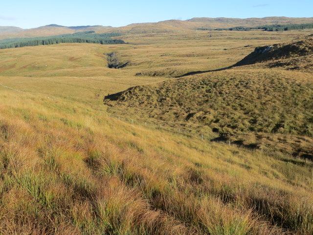 Fenceline running across the moor