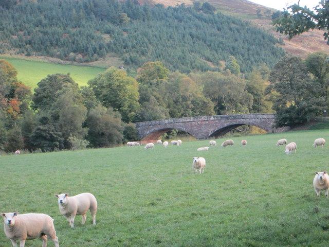 Looking towards Lamington Bridge