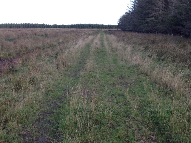 Track near Stroupster