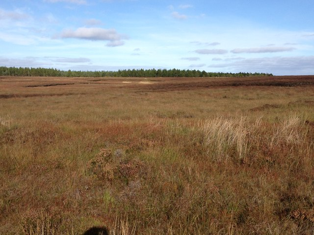 Peat bog near Stroupster