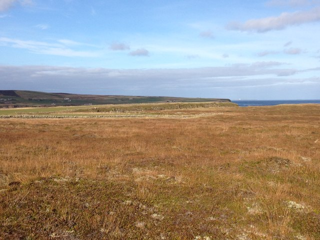 Rough grazing land near Freswick