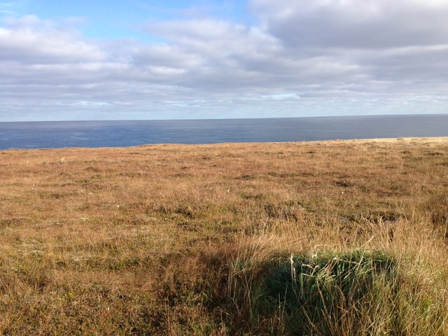 Grazing land near Freswick