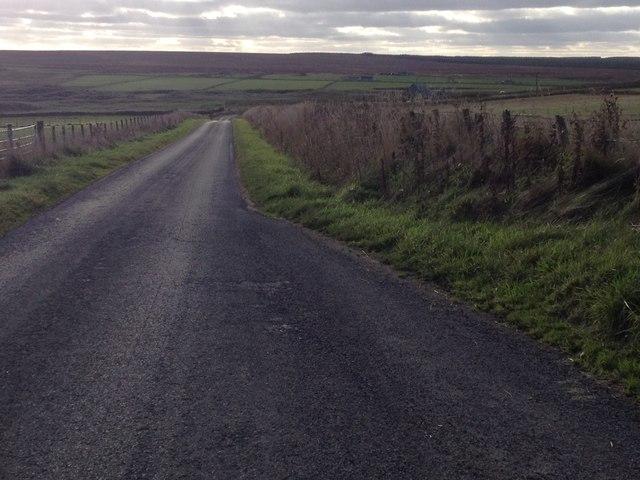 Minor road near Freswick