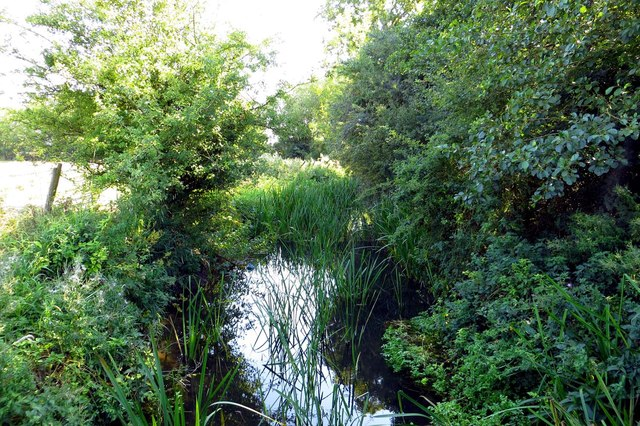 Bradford's Brook by Hithercroft Road
