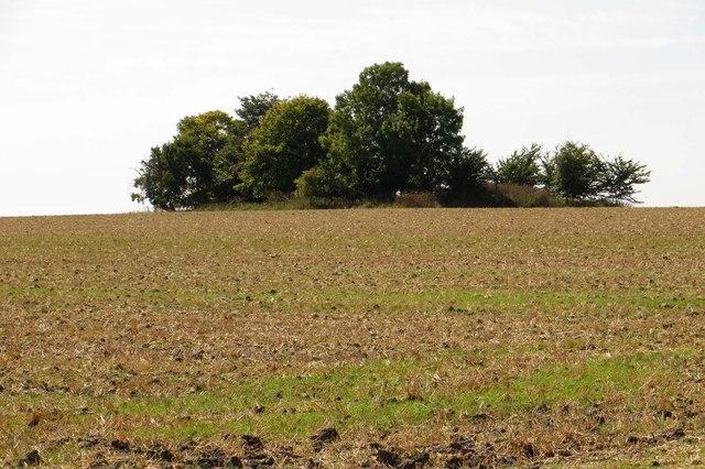Farmland on Cholsey Hill
