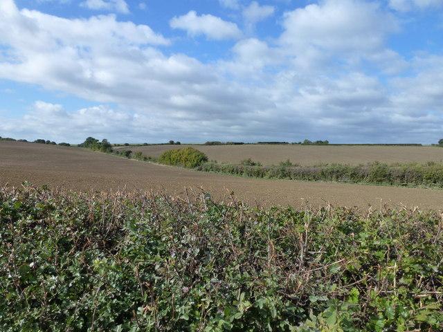 Honey Hill near Sawtry