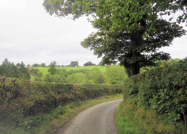 Un-named lane north of Selattyn