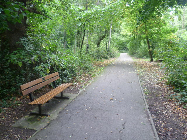 Path in South Hill Wood