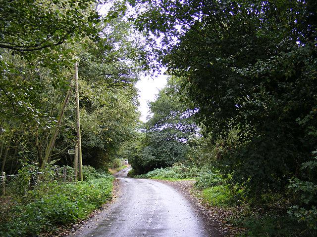 Pigeon's Lane & footpath