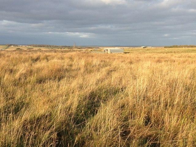 Farmland near Plover Hill