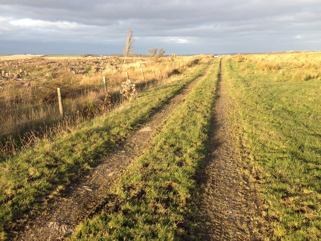 Farm track near Hastigrow