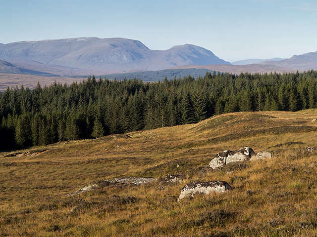 East of Rannoch Forest