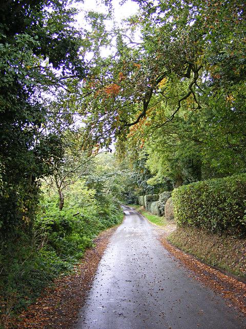 Pigeon's Lane, Washbrook Street