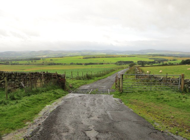 A cattle grid on the road to Thornhill