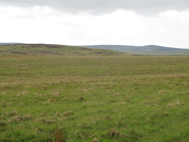 Moorland northeast of Blakeman's Law