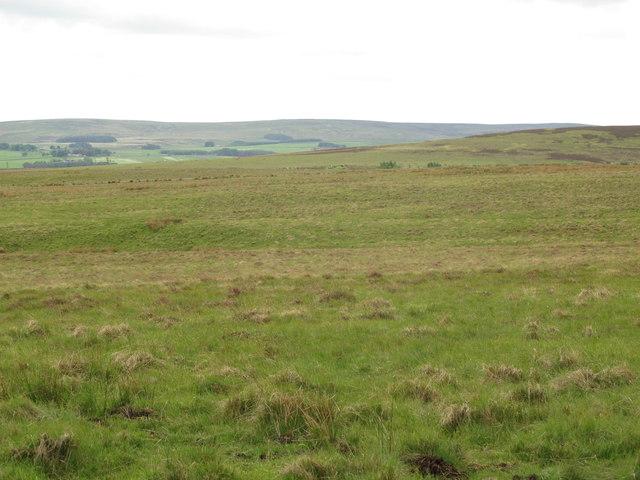 Moorland northeast of Blakeman's Law (2)