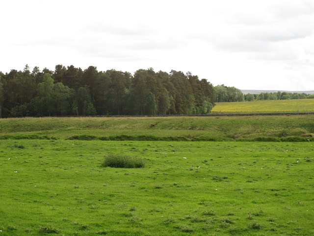 Rough pastures and woodland west of Otter Burn