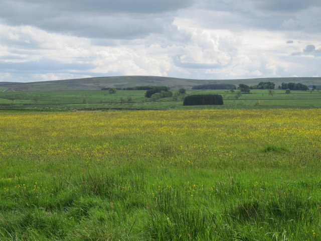 Farmland east of Percy's Cross