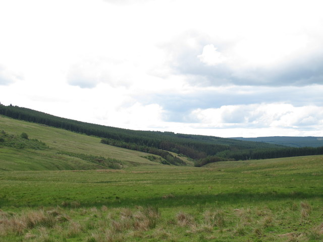 The valley of Cottonshope Burn west of Great Dour