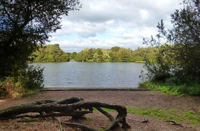South Lake, Woodley