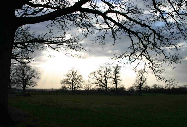 Evening - Bashurst Hill