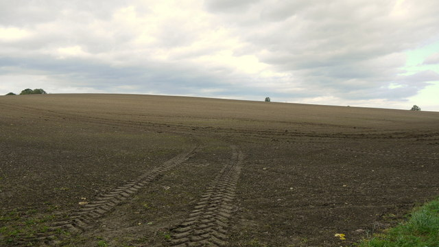 Arable land at Lyveden