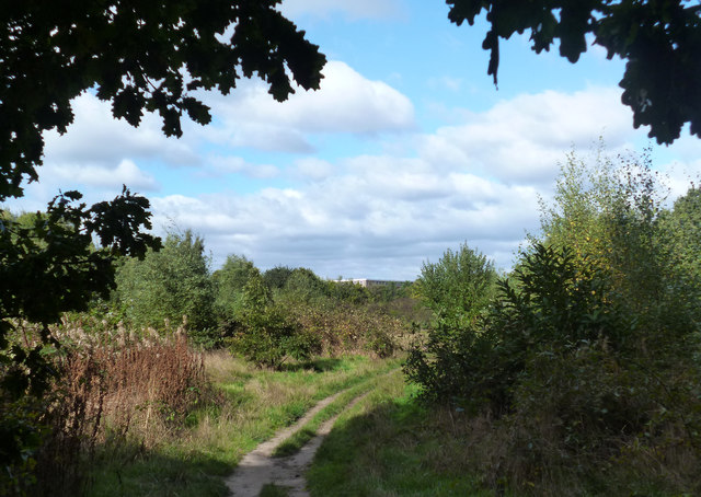 High Wood, Woodley