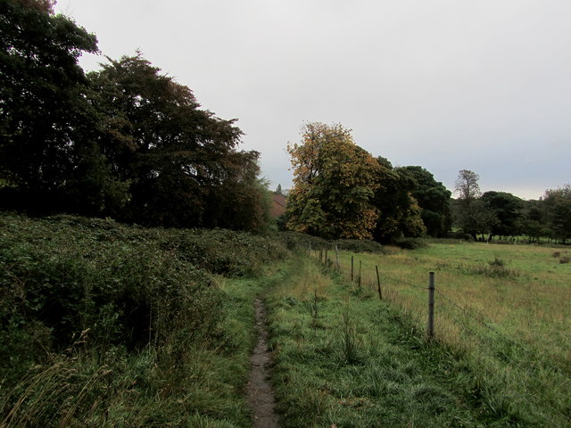 Footpath leaving Cragg Wood