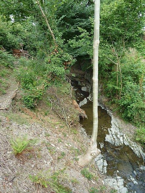 Cwm Llanfair brook