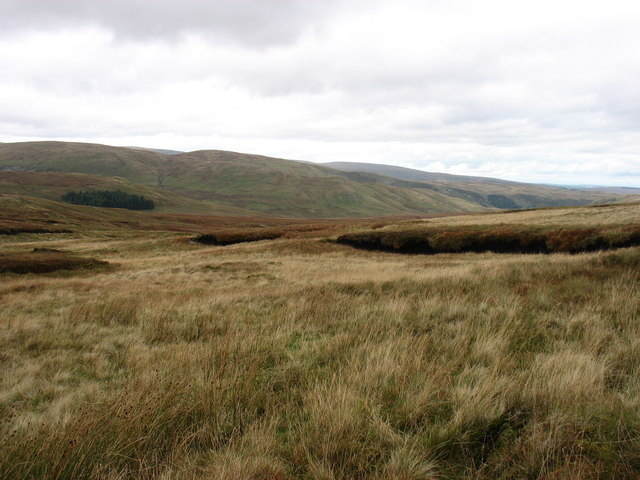 The upper slopes of Brown Howe