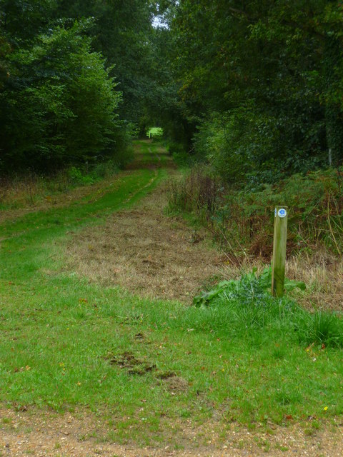 Shipwrights' Way 15