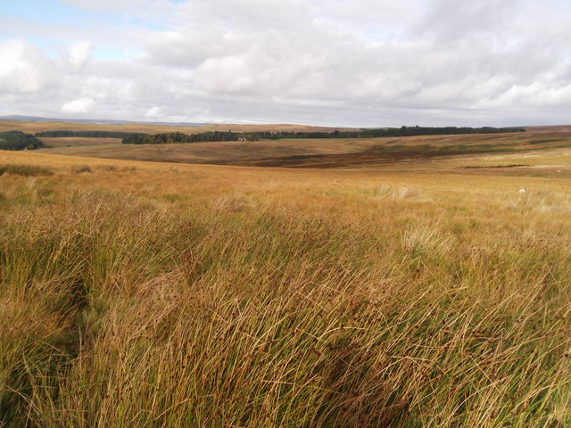 The view across the moorland to Highgreen Manor