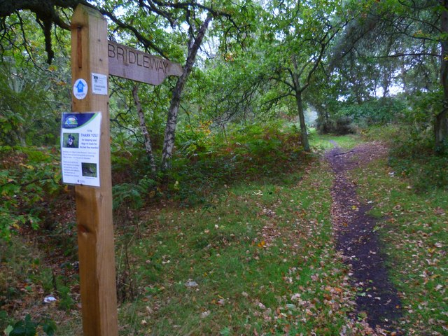 Shipwrights' Way 23
