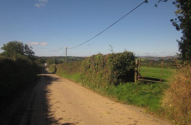 Vollard's Lane
