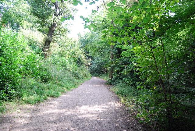 LOOP, Chislehurst Common