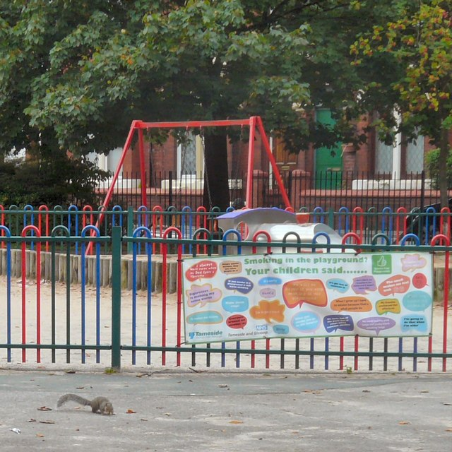 Squirrel in the playground