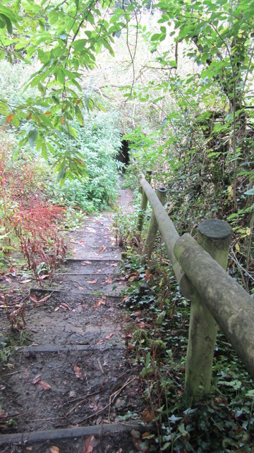 Steep steps on footpath to Worsley Obelisk