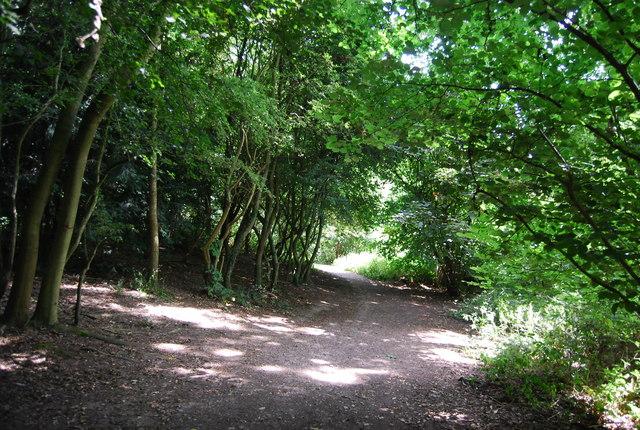 LOOP, Scadbury Reserve
