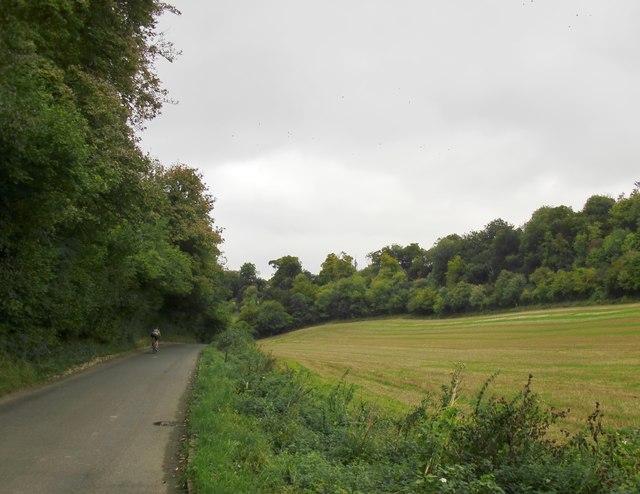 Downhill towards Fingest