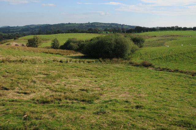 Upland grazing near Llangadfan