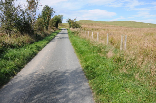 Country road and Dyfnant Forest