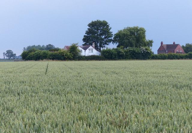 Houses in the village of Skeldyke