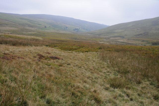 Moorland below Moel y Gadfa