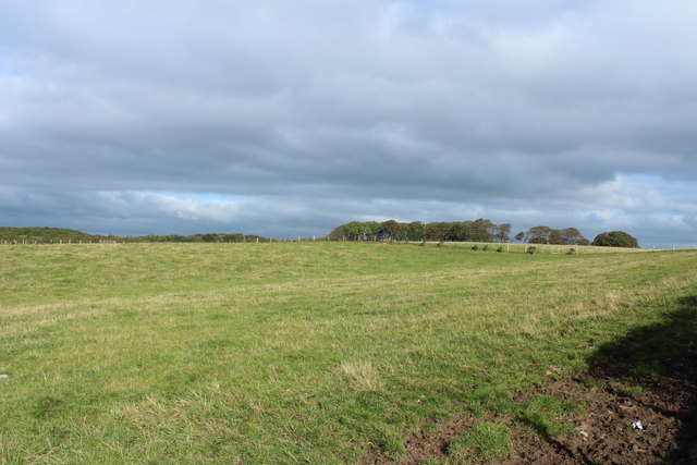 Farmland near Aught Wood
