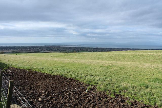 Farmland near Collennan