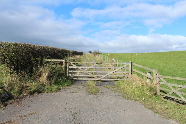 Farm Track near Hallyards